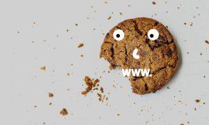 Dlaczego strony internetowe używają Ciasteczek cookies